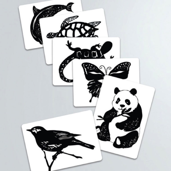 Black and white cards animal images the montessori company